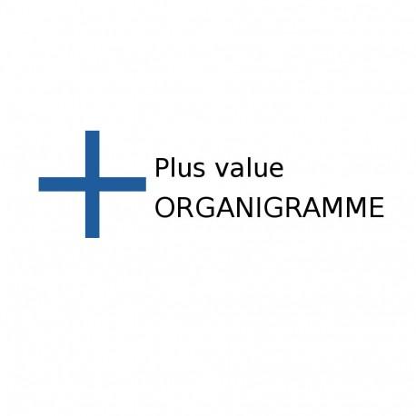 Plus value pour la copie d'une clé sur organigramme