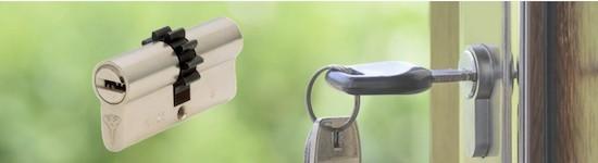 Cylindre de porte à roue dentée